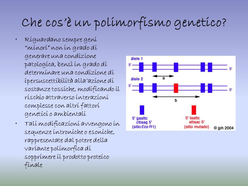 Che cosè un polimorfismo genetico? Riguardano sempre geni minori non in grado di generare una condizione patologica, bensì in grado di determinare una