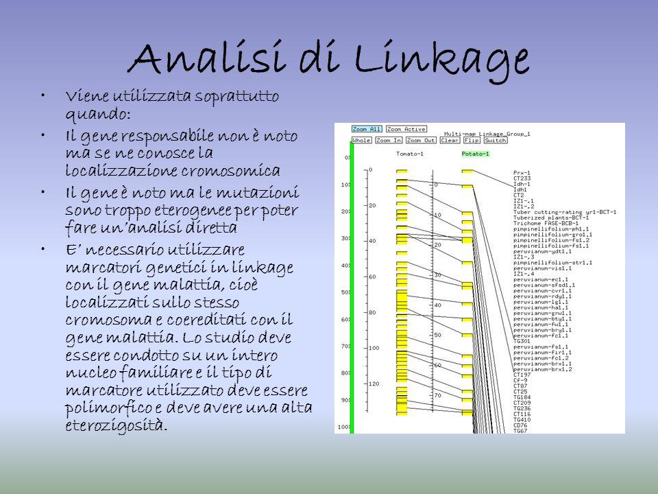 Analisi di Linkage Viene utilizzata soprattutto quando: Il gene responsabile non è noto ma se ne conosce la localizzazione cromosomica Il gene è noto
