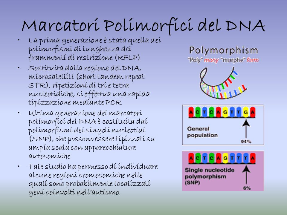 Marcatori Polimorfici del DNA La prima generazione è stata quella dei polimorfismi di lunghezza dei frammenti di restrizione (RFLP) Sostituita dalla r