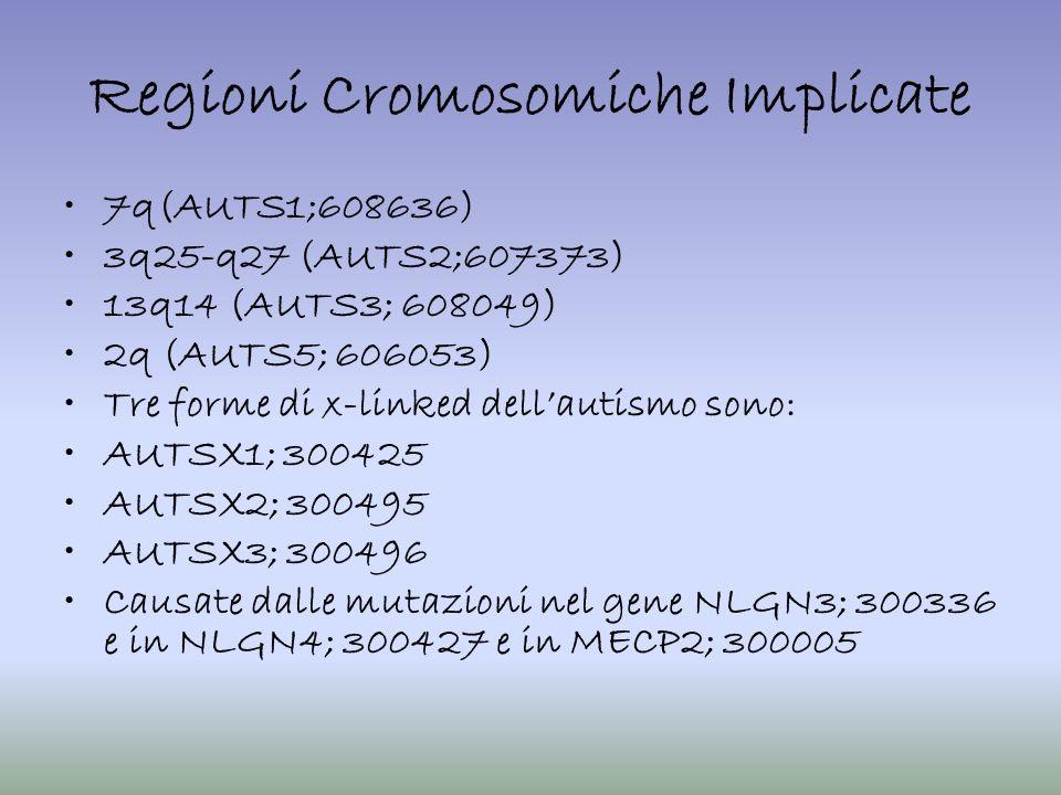 Regioni Cromosomiche Implicate 7q(AUTS1;608636) 3q25-q27 (AUTS2;607373) 13q14 (AUTS3; 608049) 2q (AUTS5; 606053) Tre forme di x-linked dellautismo son