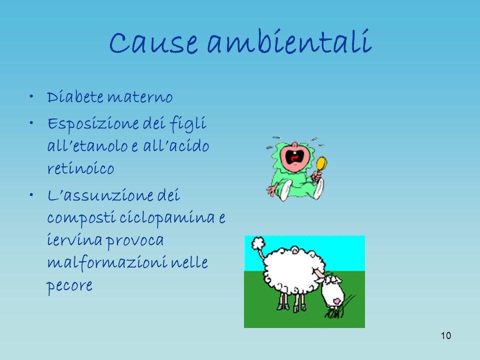 10 Cause ambientali Diabete materno Esposizione dei figli alletanolo e allacido retinoico Lassunzione dei composti ciclopamina e iervina provoca malfo