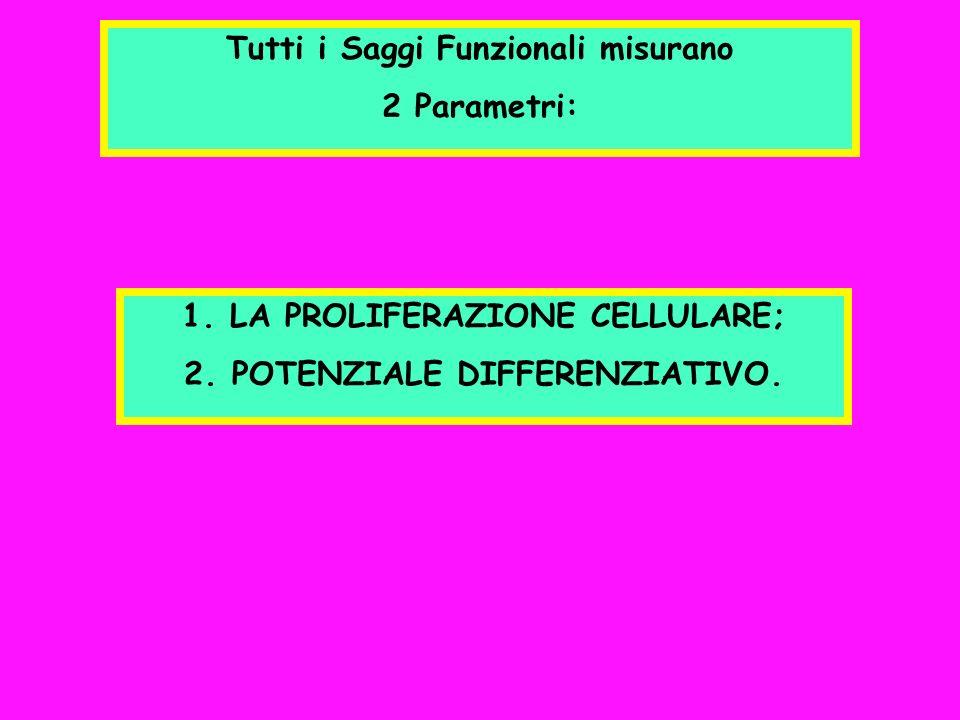 Tutti i Saggi Funzionali misurano 2 Parametri: 1.LA PROLIFERAZIONE CELLULARE; 2.POTENZIALE DIFFERENZIATIVO.