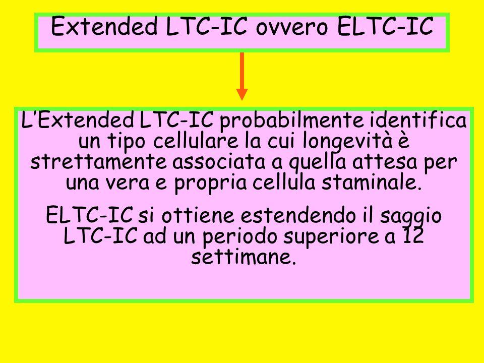 Extended LTC-IC ovvero ELTC-IC LExtended LTC-IC probabilmente identifica un tipo cellulare la cui longevità è strettamente associata a quella attesa p