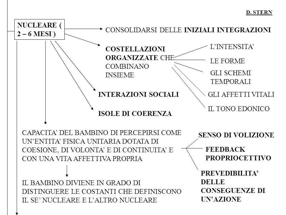 D. STERN NUCLEARE ( 2 – 6 MESI ) CONSOLIDARSI DELLE INIZIALI INTEGRAZIONI COSTELLAZIONI ORGANIZZATE CHE COMBINANO INSIEME LINTENSITA LE FORME GLI SCHE