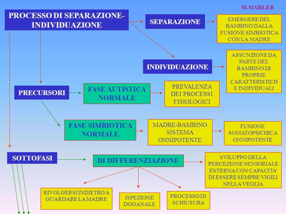 PROCESSO DI SEPARAZIONE- INDIVIDUAZIONE SEPARAZIONE EMERGERE DEL BAMBINO DALLA FUSIONE SIMBIOTICA CON LA MADRE INDIVIDUAZIONE ASSUNZIONE DA PARTE DEL BAMBINO DI PROPRIE CARATTERISTICH E INDIVIDUALI PRECURSORI FASE AUTISTICA NORMALE FASE SIMBIOTICA NORMALE PREVALENZA DEI PROCESSI FISIOLOGICI MADRE-BAMBINO SISTEMA ONNIPOTENTE FUSIONE SOMATOPSICHICA ONNIPOTENTE SOTTOFASI DI DIFFERENZIAZIONE SVILUPPO DELLA PERCEZIONE SENSORIALE ESTERNA CON CAPACITA DI ESSERE SEMPRE VIGILI NELLA VEGLIA PROCESSO DI SCHIUSURA ISPEZIONE DOGANALE RIVOLGERSI INDIETRO A GUARDARE LA MADRE M.MAHLER