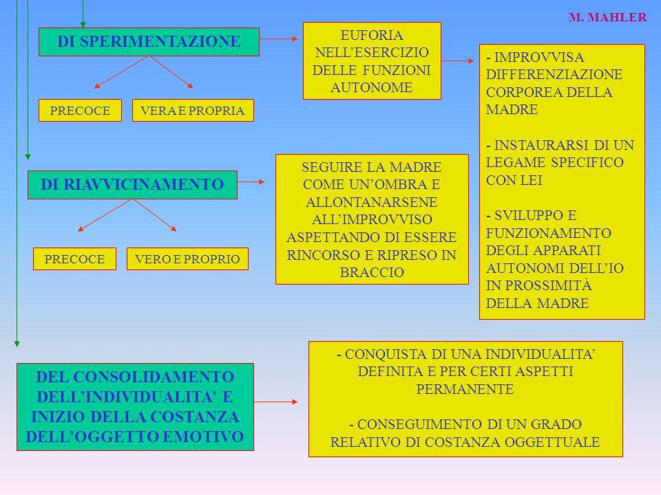 DEL CONSOLIDAMENTO DELLINDIVIDUALITA E INIZIO DELLA COSTANZA DELLOGGETTO EMOTIVO DI RIAVVICINAMENTO DI SPERIMENTAZIONE EUFORIA NELLESERCIZIO DELLE FUNZIONI AUTONOME - IMPROVVISA DIFFERENZIAZIONE CORPOREA DELLA MADRE - INSTAURARSI DI UN LEGAME SPECIFICO CON LEI - SVILUPPO E FUNZIONAMENTO DEGLI APPARATI AUTONOMI DELLIO IN PROSSIMITÀ DELLA MADRE PRECOCEVERA E PROPRIA SEGUIRE LA MADRE COME UNOMBRA E ALLONTANARSENE ALLIMPROVVISO ASPETTANDO DI ESSERE RINCORSO E RIPRESO IN BRACCIO - CONQUISTA DI UNA INDIVIDUALITA DEFINITA E PER CERTI ASPETTI PERMANENTE - CONSEGUIMENTO DI UN GRADO RELATIVO DI COSTANZA OGGETTUALE M.