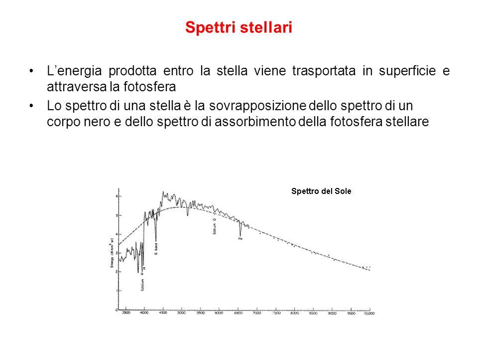 Lenergia prodotta entro la stella viene trasportata in superficie e attraversa la fotosfera Lo spettro di una stella è la sovrapposizione dello spettr