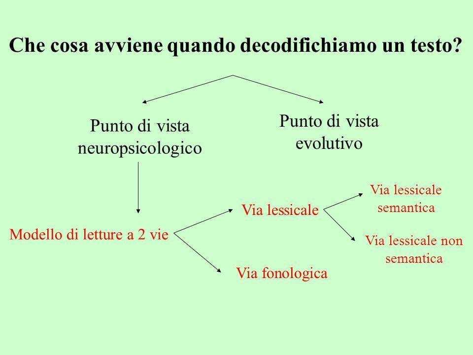 Via lessicale Il riconoscimento della parola avviene confrontando le caratteristiche visive della parola con la rappresentazione lessicale, precedentemente immagazzinata, a essa corrispondente Via fonologica La parola viene letta scomponendola nei diversi grafemi e ricomponendola in una sequenza di fonemi