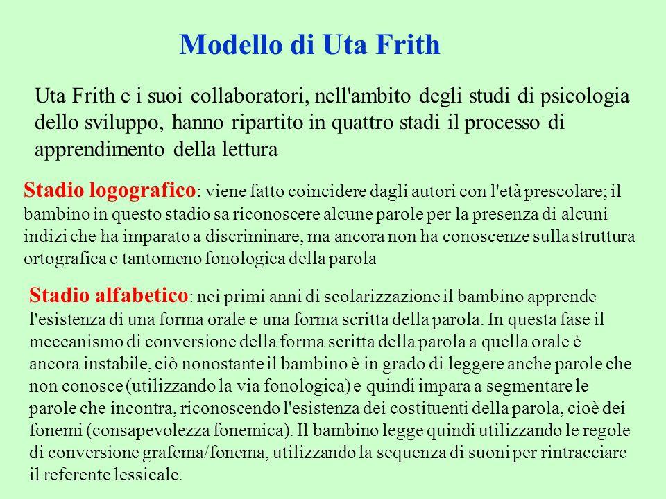 Modello di Uta Frith Uta Frith e i suoi collaboratori, nell'ambito degli studi di psicologia dello sviluppo, hanno ripartito in quattro stadi il proce