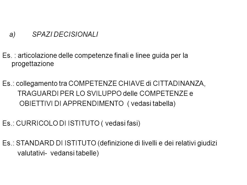 a)SPAZI DECISIONALI Es. : articolazione delle competenze finali e linee guida per la progettazione Es.: collegamento tra COMPETENZE CHIAVE di CITTADIN