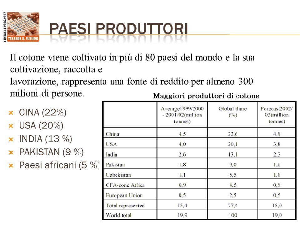 USA: 25.000 produttori appezzamenti medi di 800 ettari costo di produzione: 1,5 $ Africa Occidentale: 2 milioni di produttori appezzamenti medi di 1,5 ettari costo di produzione: 0,42 $