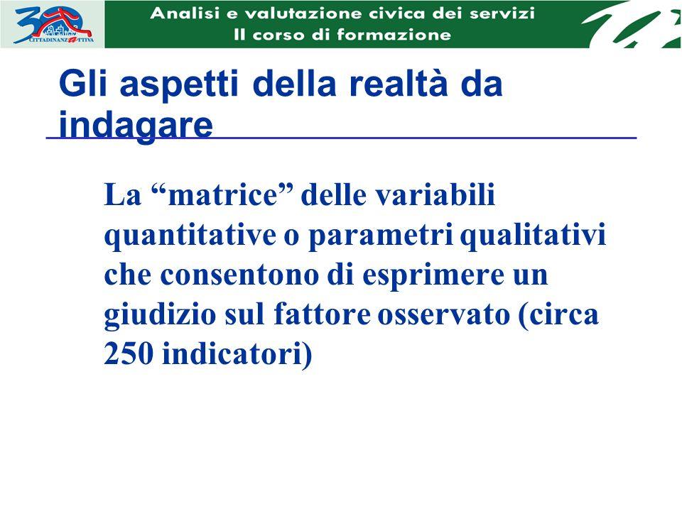Gli aspetti della realtà da indagare La matrice delle variabili quantitative o parametri qualitativi che consentono di esprimere un giudizio sul fattore osservato (circa 250 indicatori)
