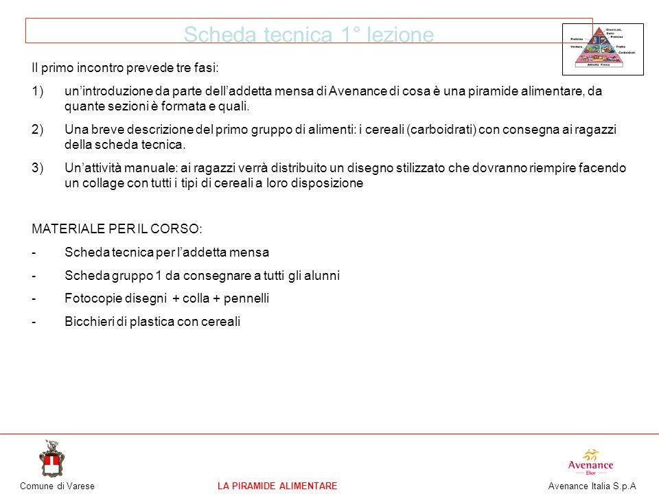 Comune di VareseLA PIRAMIDE ALIMENTARE Avenance Italia S.p.A Scheda tecnica 1° lezione Il primo incontro prevede tre fasi: 1)unintroduzione da parte d