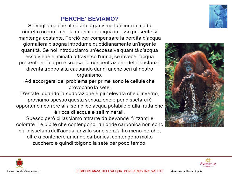 Comune di MontemurloLIMPORTANZA DELLACQUA PER LA NOSTRA SALUTE Avenance Italia S.p.A Calcola quanto manca in ciascuna bottiglia per riempirla.