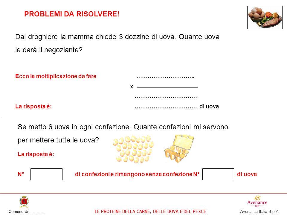 Comune di ………….LE PROTEINE DELLA CARNE, DELLE UOVA E DEL PESCE Avenance Italia S.p.A PROBLEMI DA RISOLVERE.