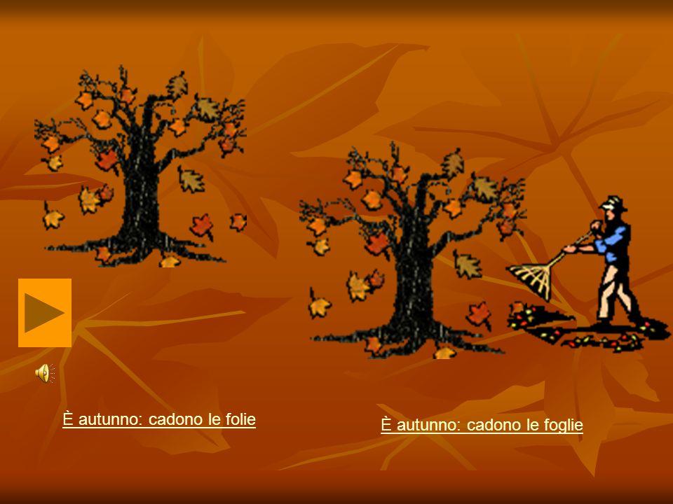 È autunno: cadono le folie È autunno: cadono le foglie