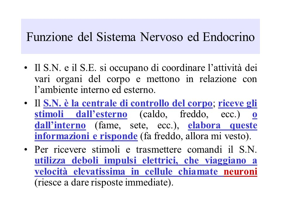 Funzione del Sistema Nervoso ed Endocrino Il S.N. e il S.E. si occupano di coordinare lattività dei vari organi del corpo e mettono in relazione con l
