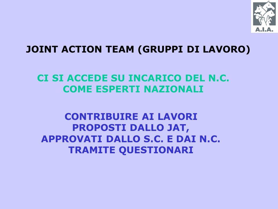 JOINT ACTION TEAM (GRUPPI DI LAVORO) CI SI ACCEDE SU INCARICO DEL N.C.