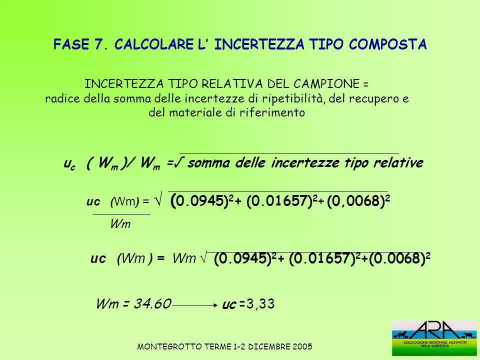 FASE 7. CALCOLARE L INCERTEZZA TIPO COMPOSTA u c ( W m )/ W m = somma delle incertezze tipo relative uc (Wm) = ( 0.0945) 2 + (0.01657) 2 + (0,0068) 2