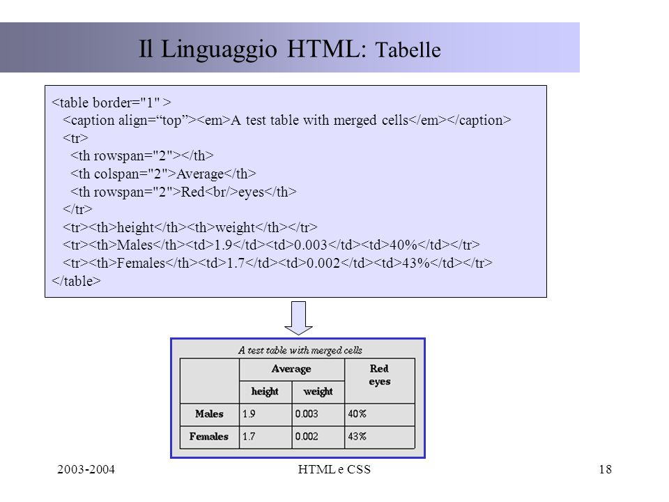 2003-2004HTML e CSS18 Il Linguaggio HTML: Tabelle A test table with merged cells Average Red eyes height weight Males 1.9 0.003 40% Females 1.7 0.002