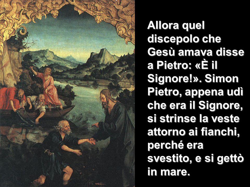 Allora quel discepolo che Gesù amava disse a Pietro: «È il Signore!». Simon Pietro, appena udì che era il Signore, si strinse la veste attorno ai fian