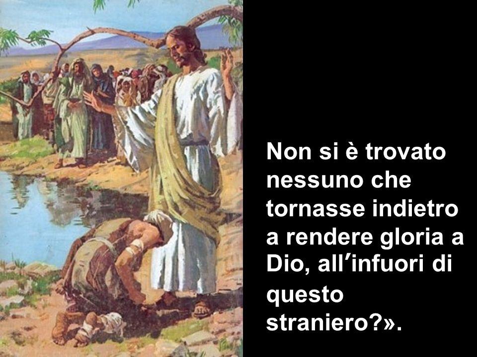 Non si è trovato nessuno che tornasse indietro a rendere gloria a Dio, allinfuori di questo straniero?».