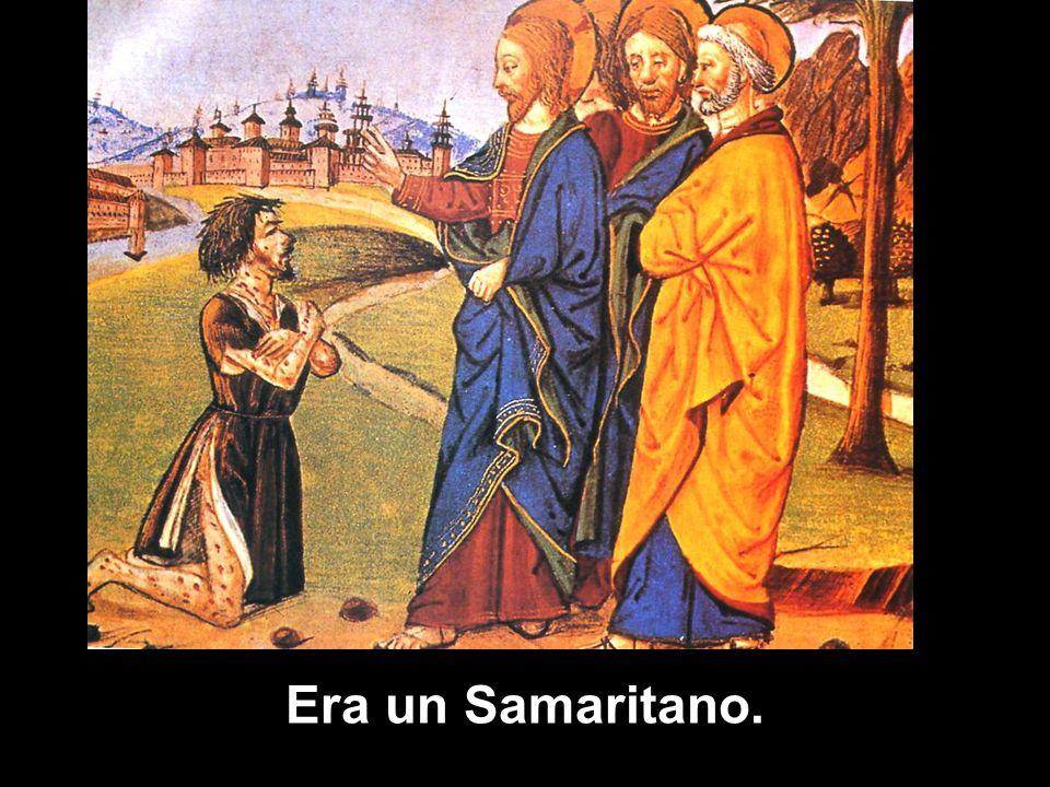 Ma Gesù osservò: «Non ne sono stati purificati dieci? E gli altri nove dove sono?