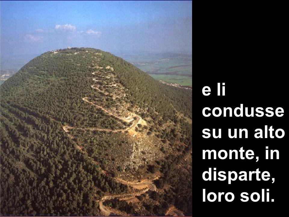 e li condusse su un alto monte, in disparte, loro soli.
