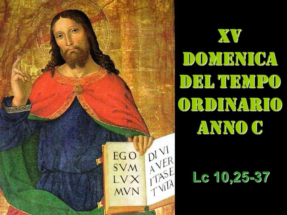 XV DOMENICA DEL TEMPO ORDINARIO ANNO C Lc 10,25-37