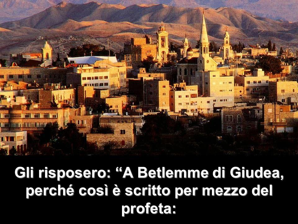 E tu, Betlemme, terra di Giuda, non sei davvero lultima della città principali di Giuda: da te infatti uscirà un capo che sarà il pastore del mio popolo, Israele.