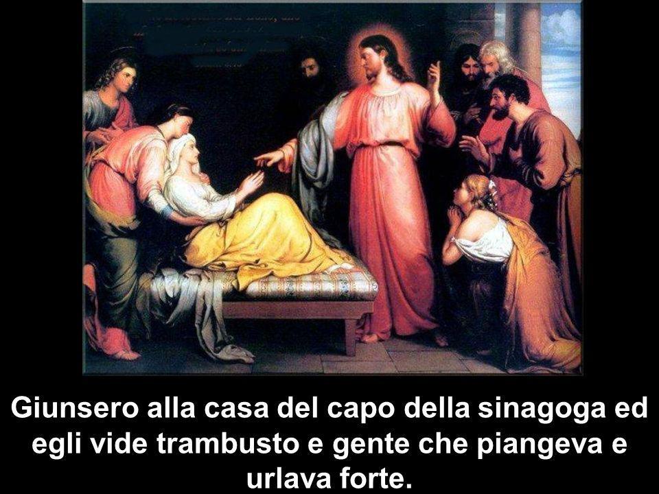 Ma Gesù, udito quanto dicevano, disse al capo della sinagoga: «Non temere, soltanto abbi fede!».