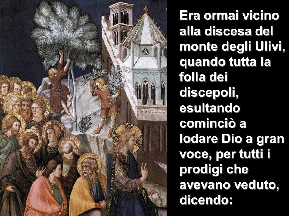 Era ormai vicino alla discesa del monte degli Ulivi, quando tutta la folla dei discepoli, esultando cominciò a lodare Dio a gran voce, per tutti i pro