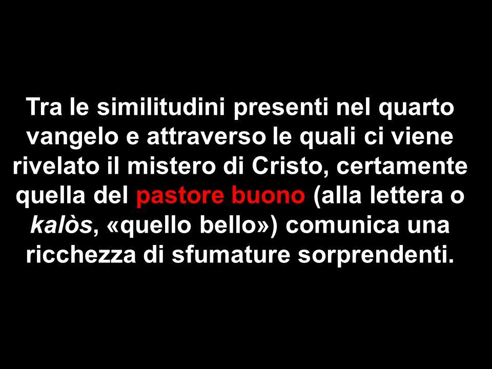Tra le similitudini presenti nel quarto vangelo e attraverso le quali ci viene rivelato il mistero di Cristo, certamente quella del pastore buono (all