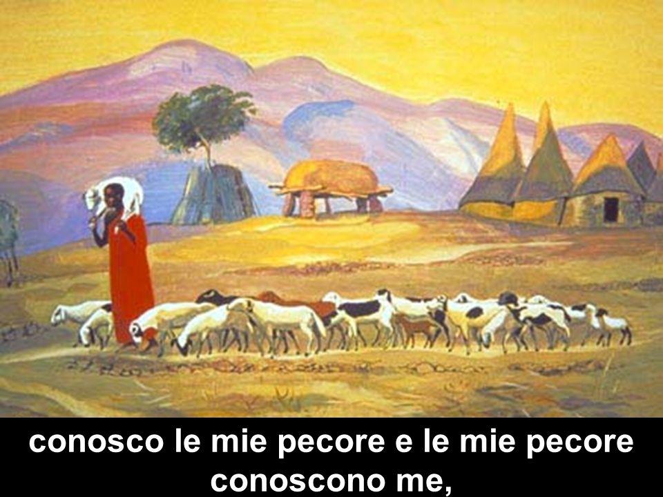 È una immagine che si radica su di una lunga tradizione biblica e, nello stesso tempo, si muove all interno di un contesto familiare, quotidiano, almeno per una società nomade come era quella ebraica.