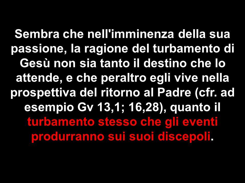 Sembra che nell'imminenza della sua passione, la ragione del turbamento di Gesù non sia tanto il destino che lo attende, e che peraltro egli vive nell