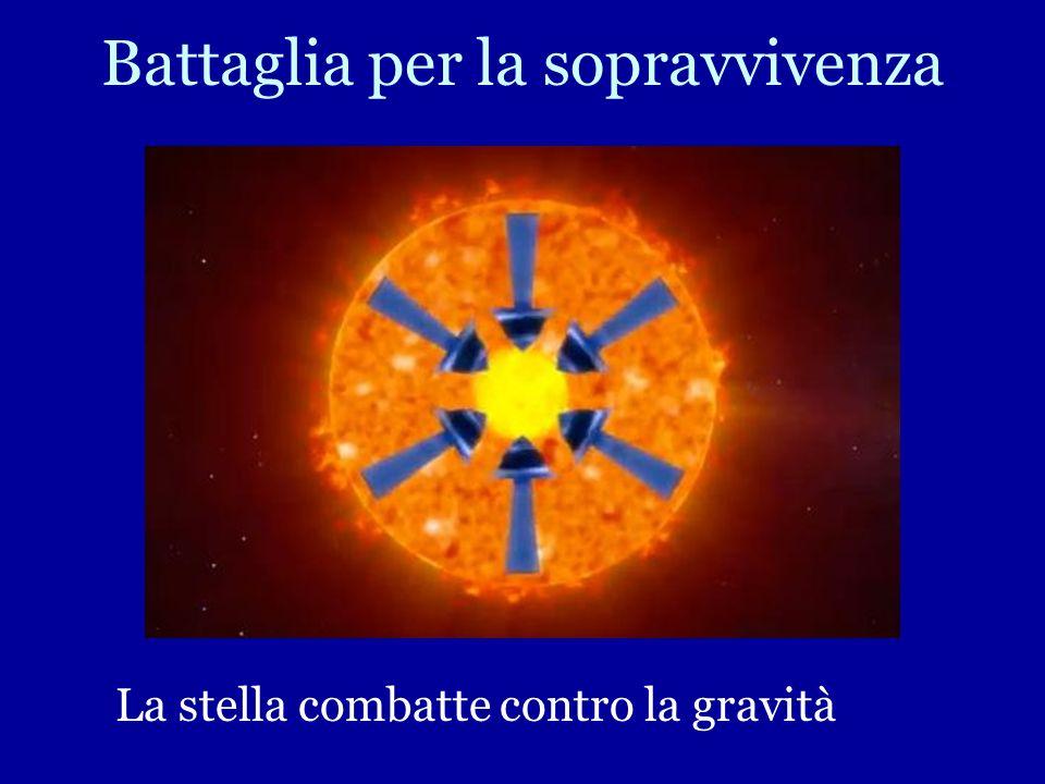La Fusione fornisce energia per alimentare la stella per tutta la sua vita fornendola di una sorgente costante di luce e calore Produce da sé Luce e C