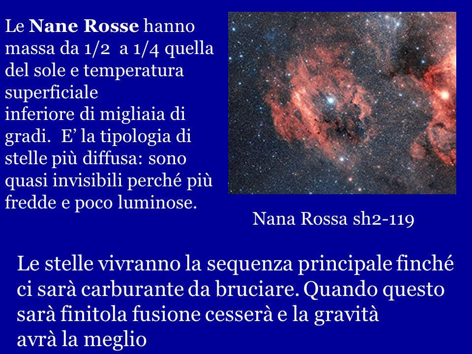 Nana Rossa: Proxima Centauri vista nella precedente slide Tutte le stelle di piccole dimensioni sono nella loro infanzia (13 miliardi di anni) altre a
