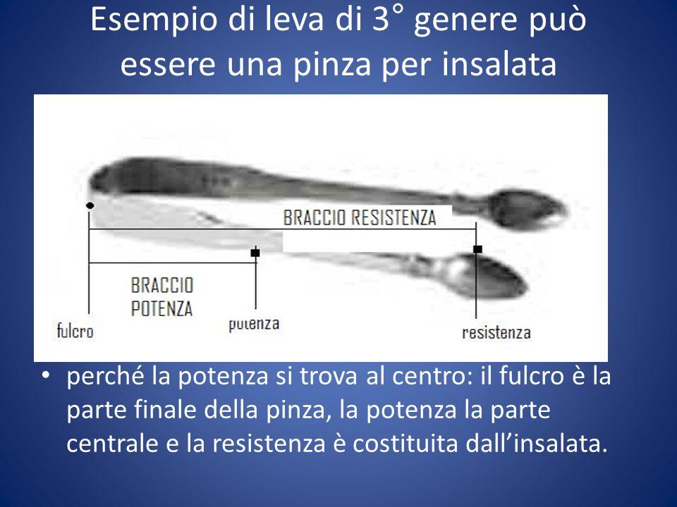 Esempio di leva di 3° genere può essere una pinza per insalata perché la potenza si trova al centro: il fulcro è la parte finale della pinza, la poten