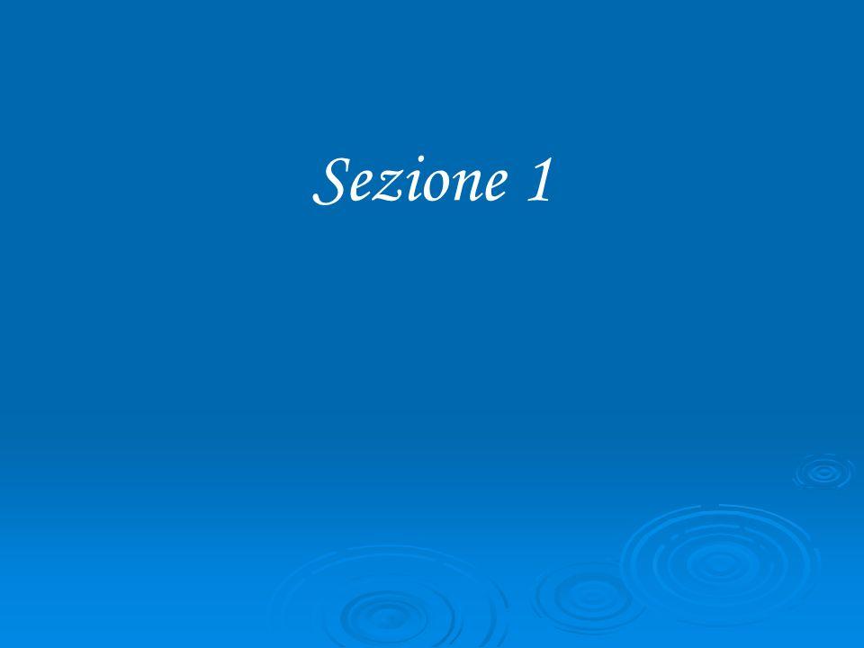 Sezione 1