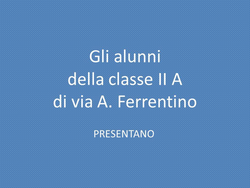 Gli alunni della classe II A di via A. Ferrentino PRESENTANO