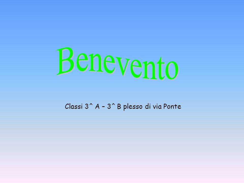 Classi 3^ A – 3^ B plesso di via Ponte