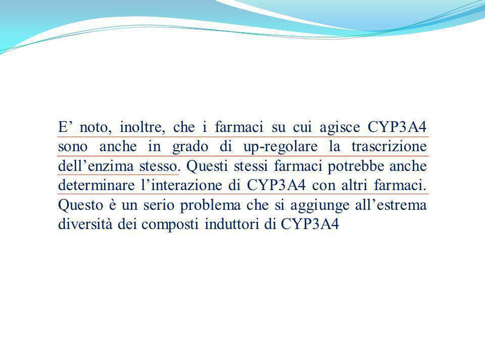 E noto, inoltre, che i farmaci su cui agisce CYP3A4 sono anche in grado di up-regolare la trascrizione dellenzima stesso. Questi stessi farmaci potreb