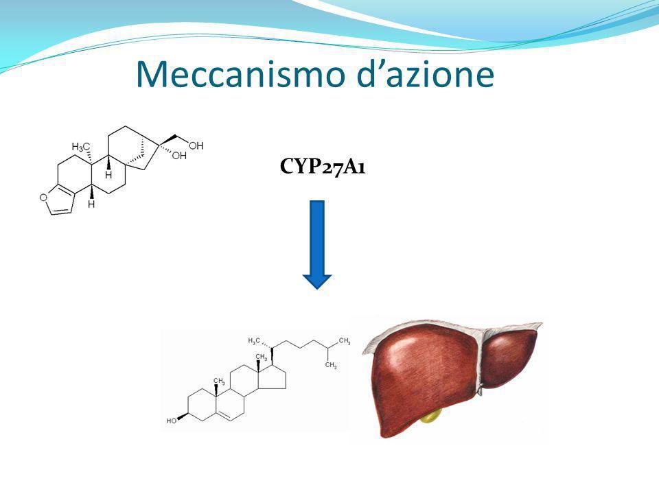 Meccanismo dazione CYP27A1