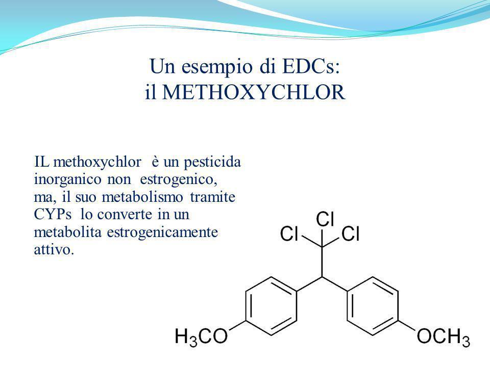 IL methoxychlor è un pesticida inorganico non estrogenico, ma, il suo metabolismo tramite CYPs lo converte in un metabolita estrogenicamente attivo. U