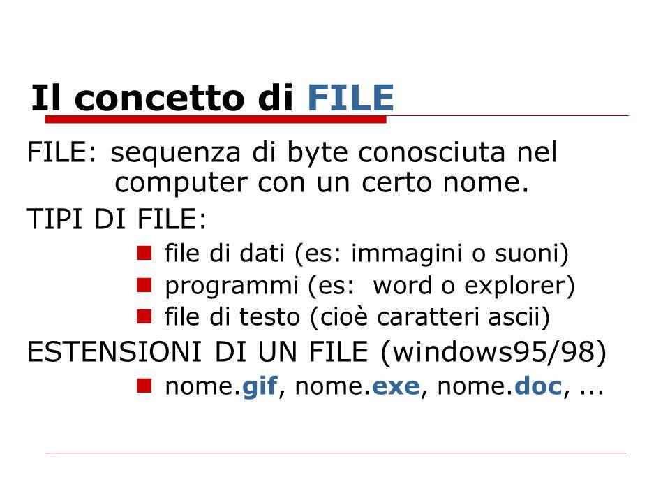 Il concetto di FILE FILE: sequenza di byte conosciuta nel computer con un certo nome. TIPI DI FILE: file di dati (es: immagini o suoni) programmi (es: