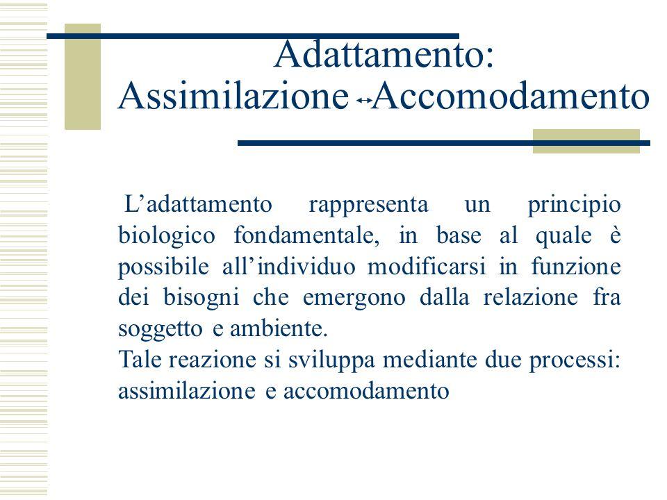 Adattamento: Assimilazione Accomodamento Ladattamento rappresenta un principio biologico fondamentale, in base al quale è possibile allindividuo modif