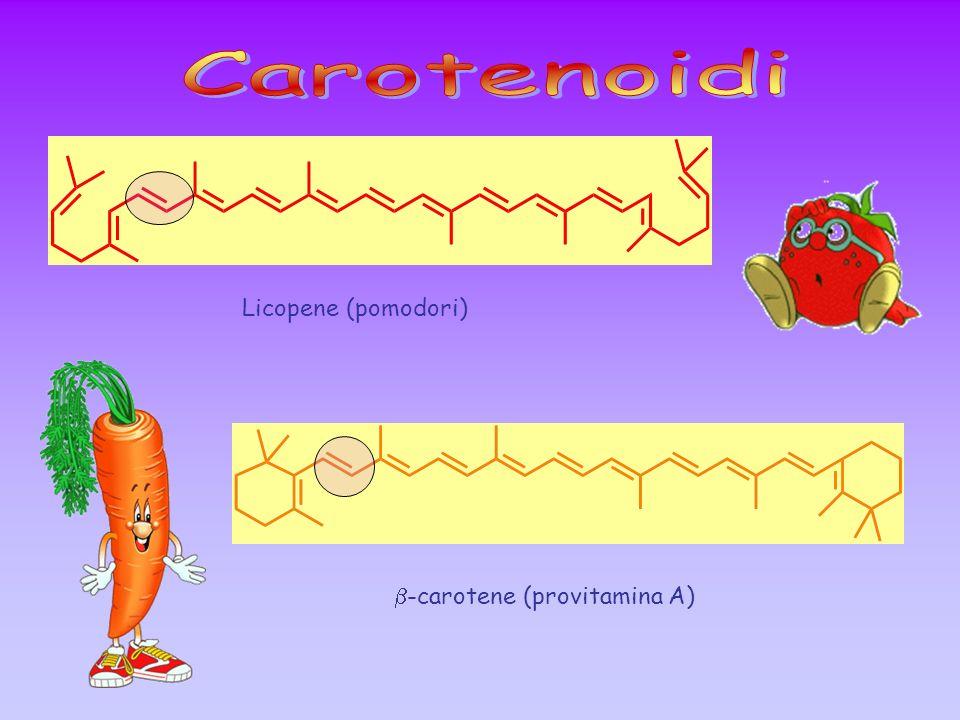 Licopene (pomodori) -carotene (provitamina A)