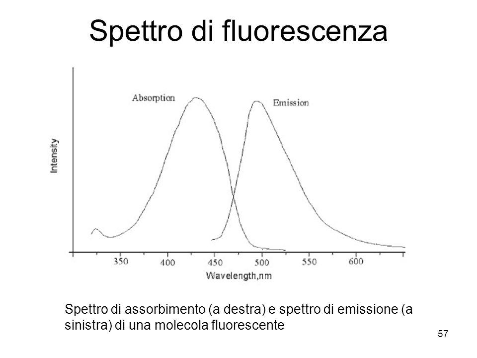 57 Spettro di fluorescenza Spettro di assorbimento (a destra) e spettro di emissione (a sinistra) di una molecola fluorescente