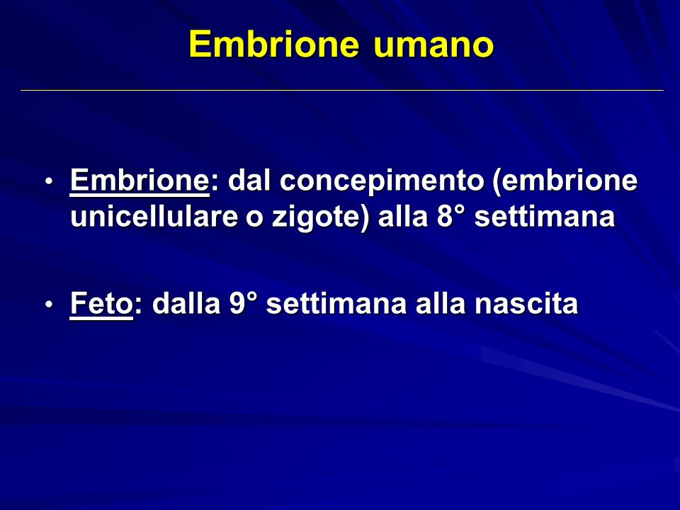 Embrione: dal concepimento (embrione unicellulare o zigote) alla 8° settimana Embrione: dal concepimento (embrione unicellulare o zigote) alla 8° sett