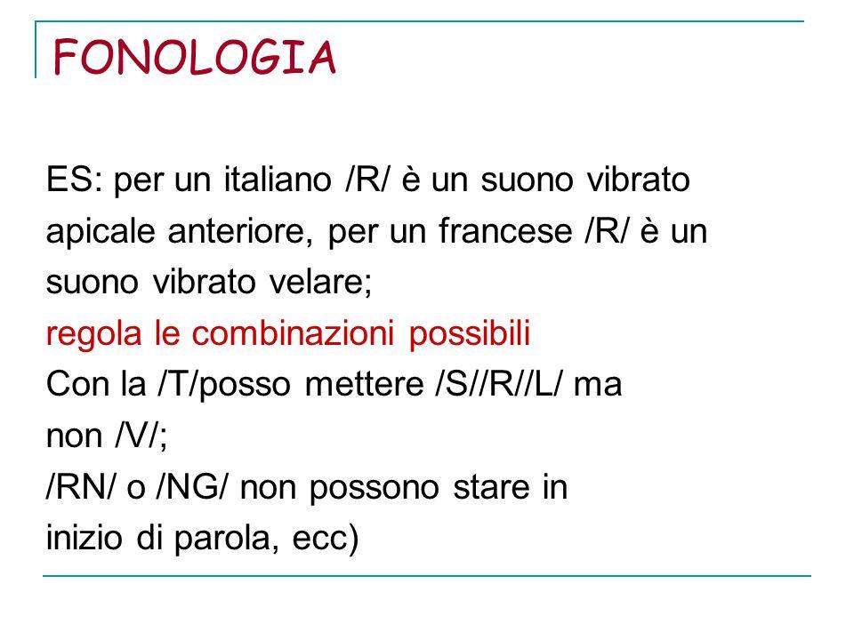 FONOLOGIA ES: per un italiano /R/ è un suono vibrato apicale anteriore, per un francese /R/ è un suono vibrato velare; regola le combinazioni possibil